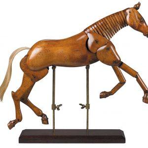 Modell Pferd